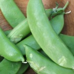 freshpeas