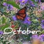 October150